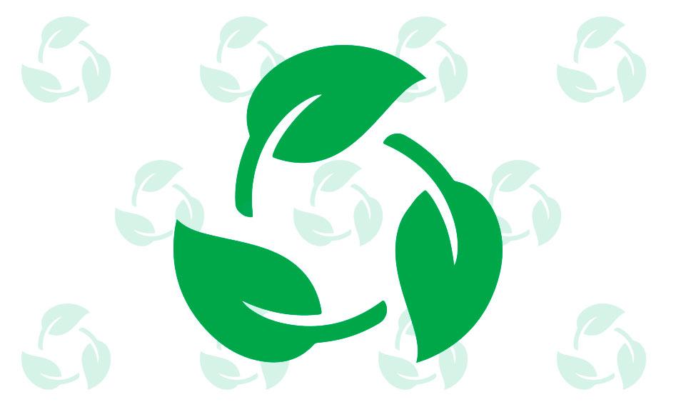 Lee más sobre el artículo ¿Qué significa biodegradable?