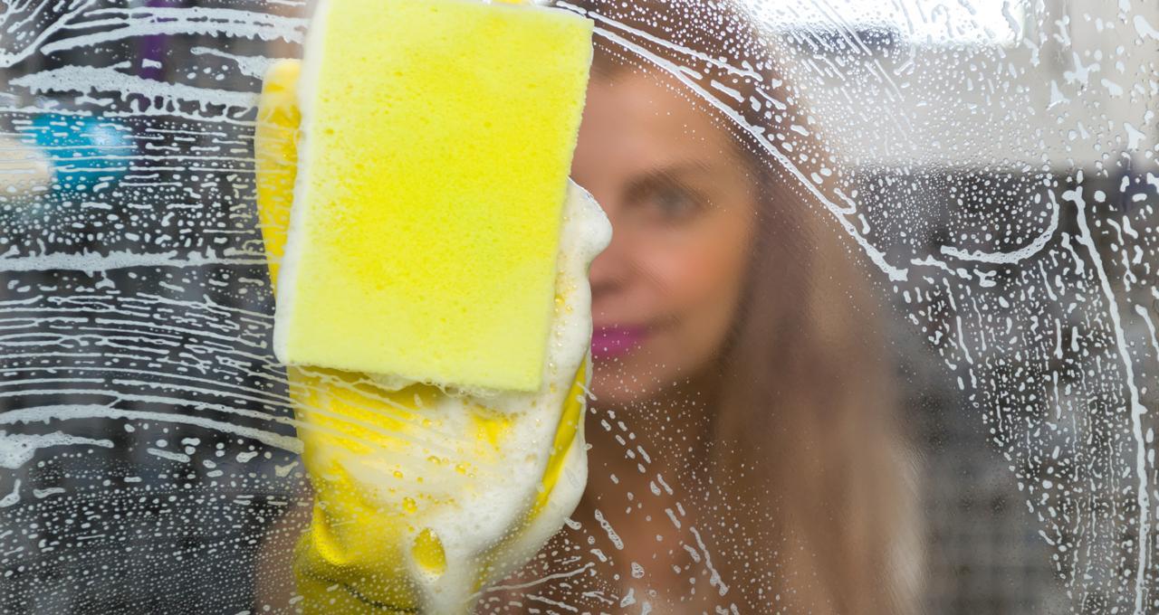 Lee más sobre el artículo Virus y bacterias en tu hogar