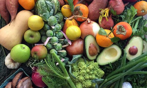 Lee más sobre el artículo ¿Por qué desinfectar los alimentos?